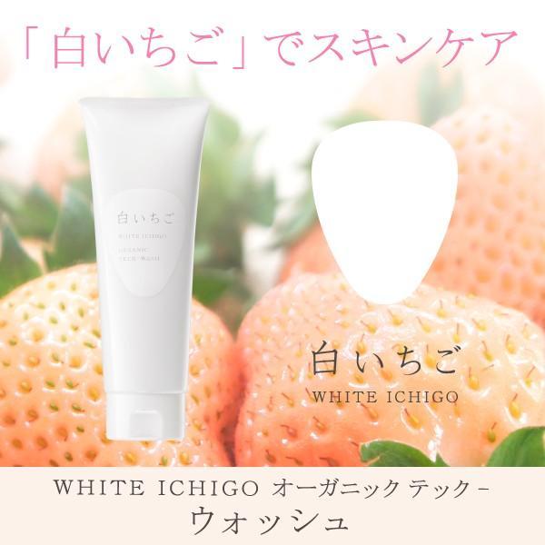 白いちご WHITE ICHIGO オーガニック テック-ウォッシュ 洗顔料|migaki-ichigo