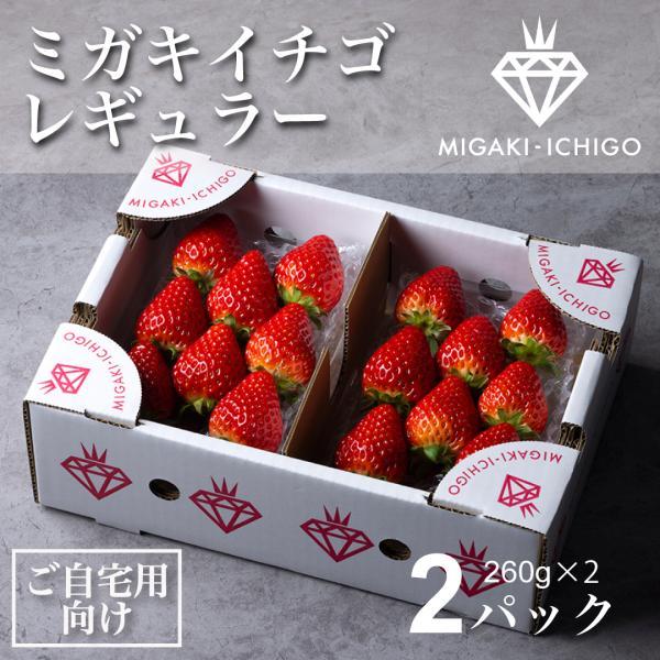 いちご ミガキイチゴ スタンダード(ご自宅用) 2パック 275g以上×2|migaki-ichigo