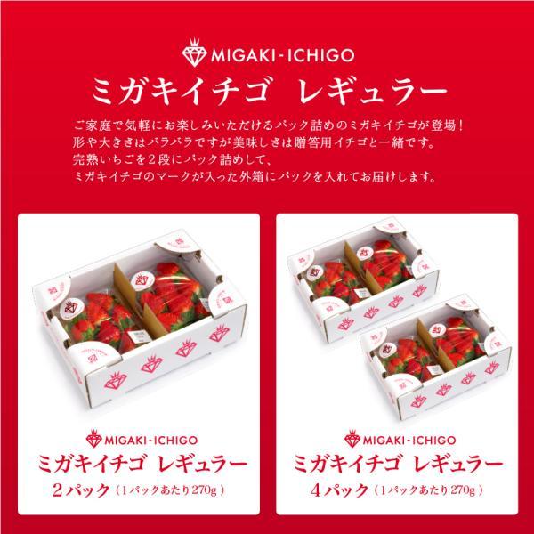 いちご ミガキイチゴ スタンダード(ご自宅用) 2パック 275g以上×2|migaki-ichigo|02
