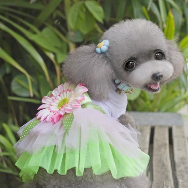 ドッグウェア ペットウェア ワンピース 犬の服 犬服 猫の服 キャットウェア 洋服 ペット用品 小型犬 カジュアルドレス ノースリーブ フラワーモチー