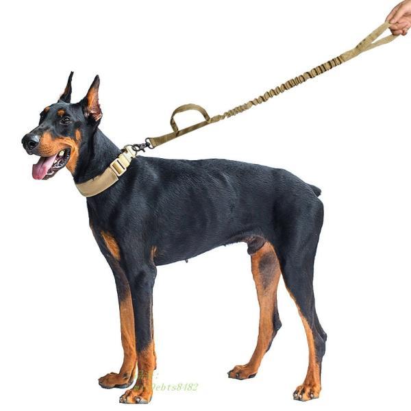 軍 戦術的な犬 鎖 ナイ ロン バンジーリーシュ ペット 軍事 リード ベル ト トレーニング ランニング 中 大型 犬 ジャーマンシェ パー ド グループ上 ホーム|miistore|06