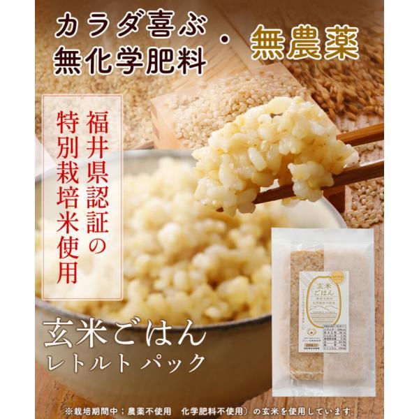 玄米ごはん レトルト エコパック 無農薬・無化学肥料 令和2年福井県産 特別栽培米 コシヒカリ使用 送料無料 200g×20袋