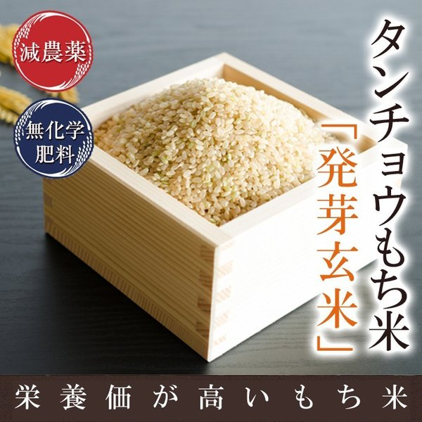 発芽玄米 新米 減農薬・無化学肥料 もち米 タンチョウ 令和2年福井県産 特別栽培米 3kg 真空パック 送料無料 ★アブシジン酸は検出されません