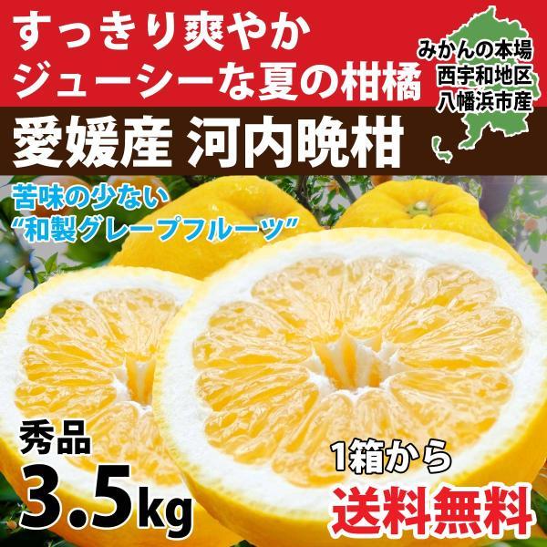 河内晩柑 ナダオレンジ 美生柑 秀品約3kg 愛媛産 和製グレープフルーツ|mikan-hana