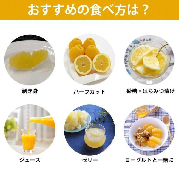 河内晩柑 ナダオレンジ 美生柑 秀品約3kg 愛媛産 和製グレープフルーツ|mikan-hana|05