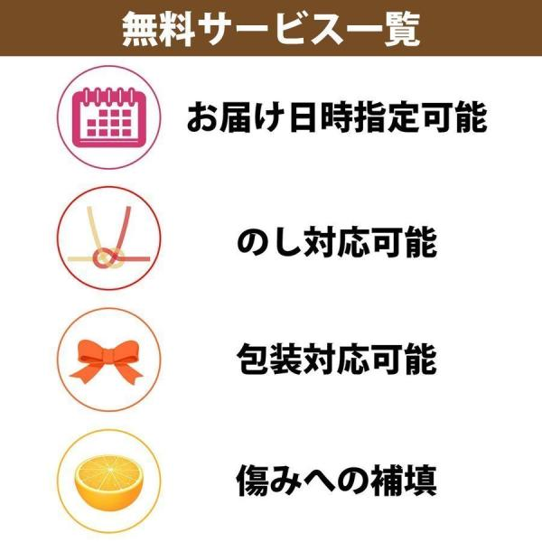 河内晩柑 ナダオレンジ 美生柑 秀品約3kg 愛媛産 和製グレープフルーツ|mikan-hana|07