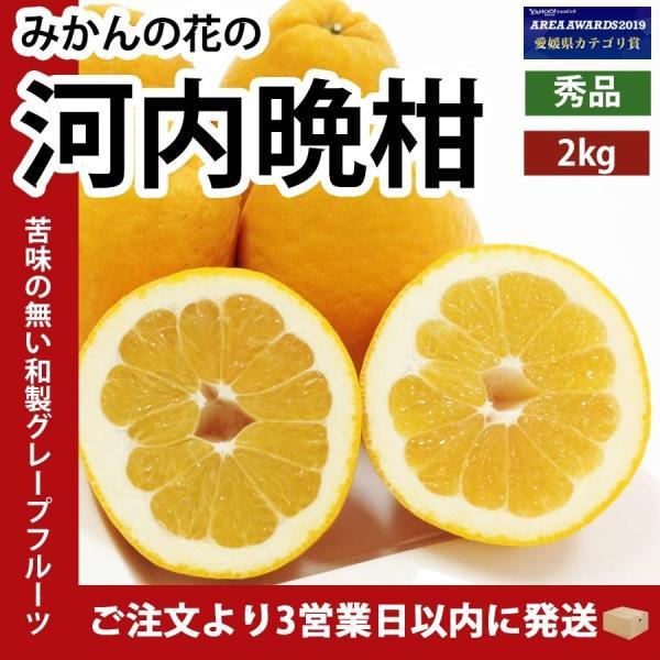 河内晩柑 ナダオレンジ 美生柑 秀品2kg 愛媛産 和製グレープフルーツ mikan-hana