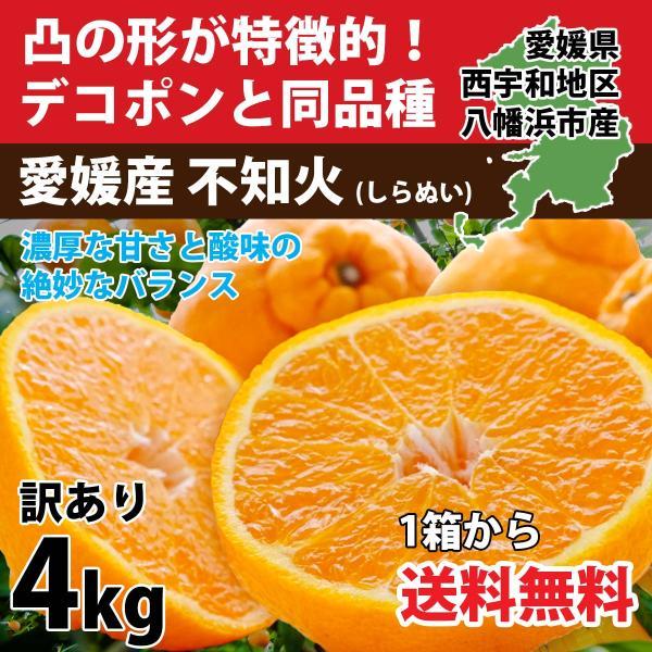 デコポン 同品種 みかん 不知火 訳あり 約4kg 濃厚  甘い 送料無料  愛媛産 3営業日以内に出荷 mikan-hana