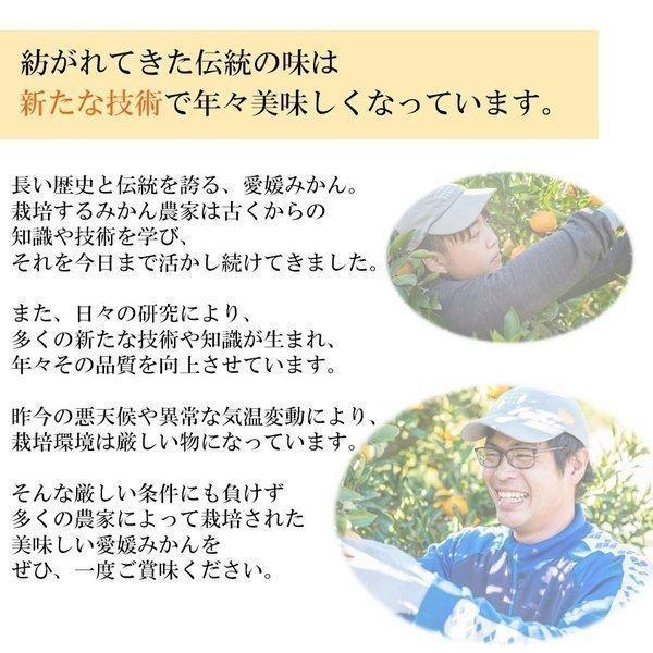 みかん 訳あり 愛媛みかん ミカン 10kg 早生 送料無料|mikan-hana|04