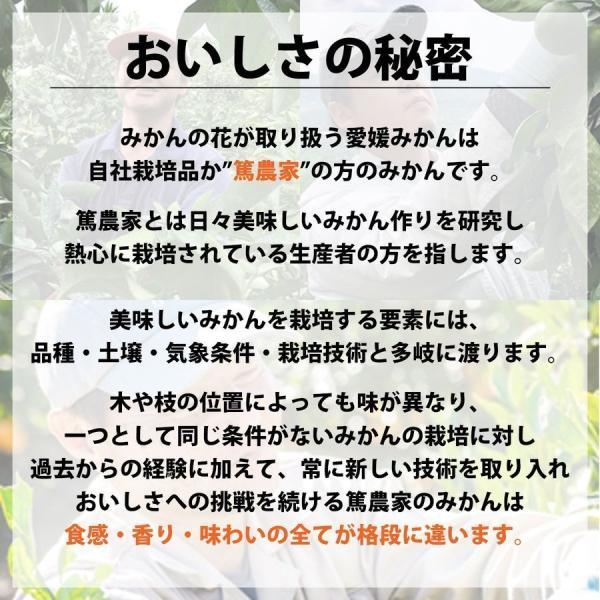 みかん 訳あり 愛媛みかん ミカン 10kg 早生 送料無料|mikan-hana|06
