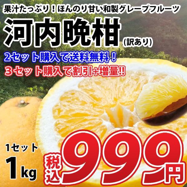 みかん 河内晩柑 訳あり L〜3L 1kg 愛媛県 八幡浜産 ミカン 蜜柑 お取り寄せグルメ
