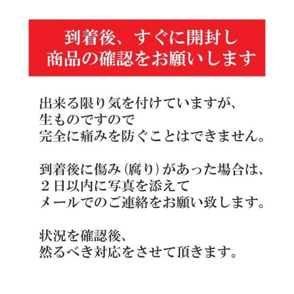 清見 みかん 清見 愛媛産 訳あり 約2.5kg 2箱購入で1kg増量 産地直送|mikan-hana|07