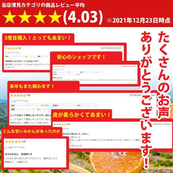 清見 みかん 清見タンゴール 清見 愛媛産 訳あり 約5kg 産地直送 送料無料 mikan-hana 07