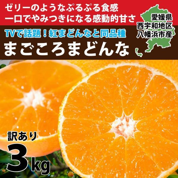 まごころまどんな(愛媛果試28号)  訳あり(約3kg)  産地直送 送料無料|mikan-hana