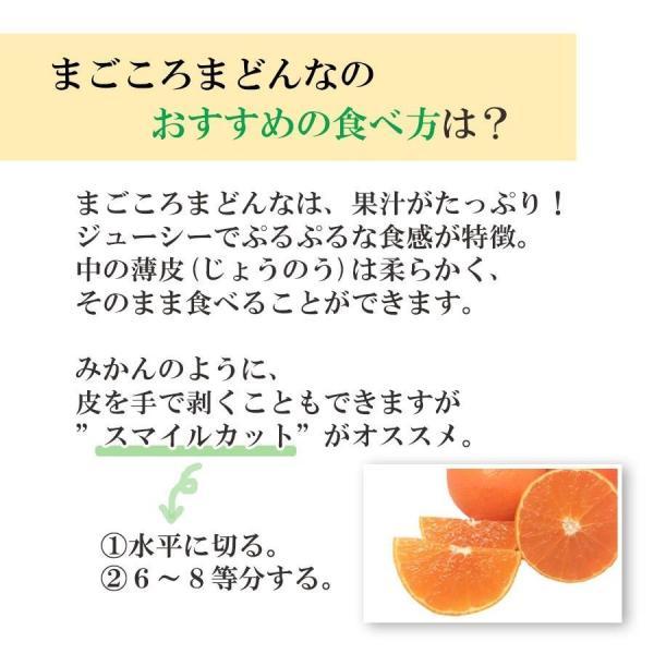 まごころまどんな(愛媛果試28号)  訳あり(約3kg)  産地直送 送料無料|mikan-hana|04