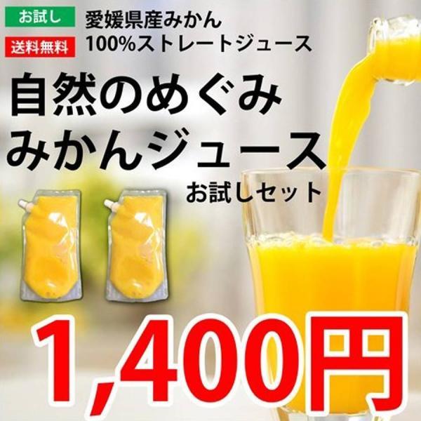 みかん ミカン 愛媛産 100%ストレートジュース お試しセット 2本入り|mikan-hana
