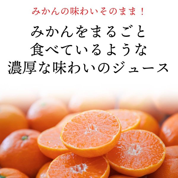 自然のめぐみ みかんジュース 小瓶180ml×12本 3営業日以内に出荷|mikan-hana|02