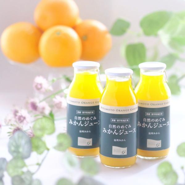自然のめぐみ みかんジュース 小瓶180ml×12本 3営業日以内に出荷|mikan-hana|04