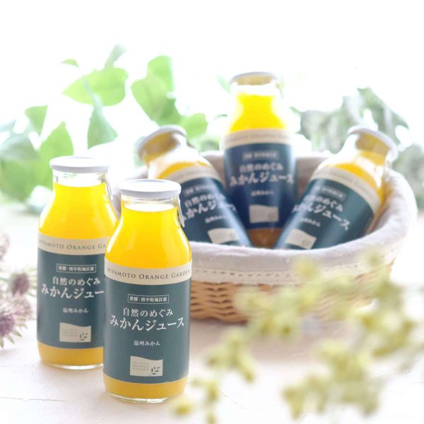 自然のめぐみ みかんジュース 小瓶180ml×12本 3営業日以内に出荷|mikan-hana|05