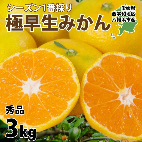 みかん 愛媛産 秀品 3kg 送料無料 3営業日以内に出荷 mikan-hana