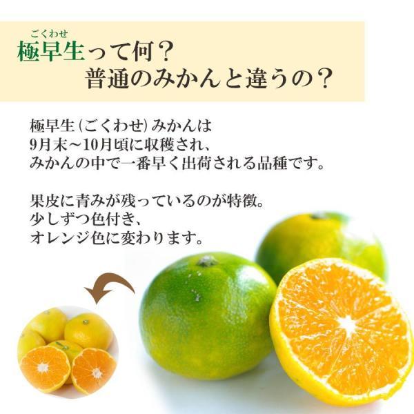 みかん 愛媛産 秀品 3kg 送料無料 3営業日以内に出荷 mikan-hana 02