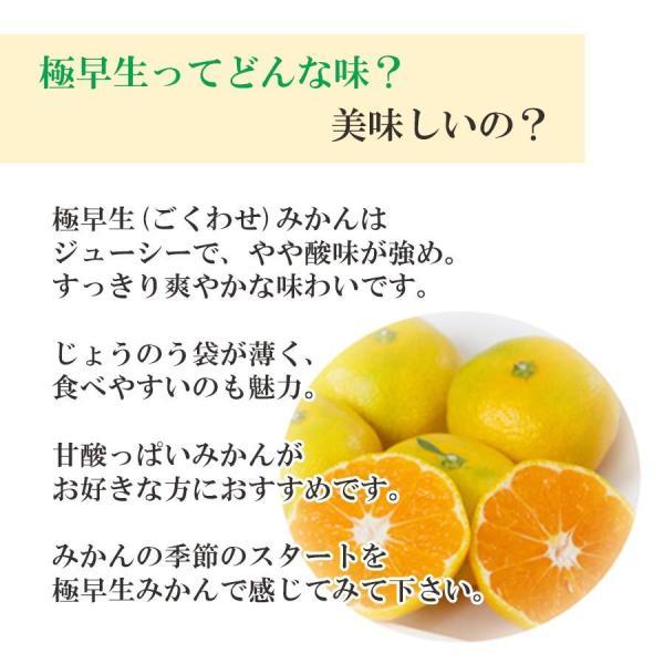 みかん 愛媛産 秀品 3kg 送料無料 3営業日以内に出荷 mikan-hana 03