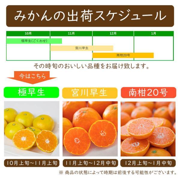 みかん 愛媛産 秀品 3kg 送料無料 3営業日以内に出荷 mikan-hana 04