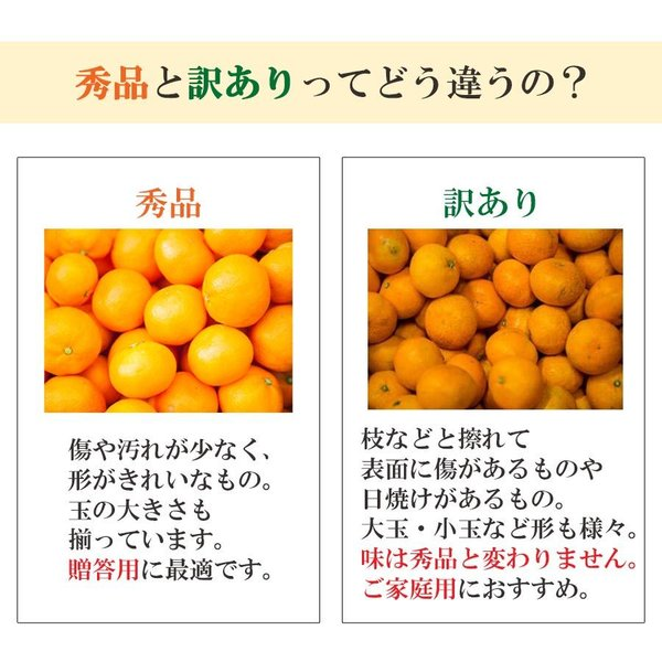 みかん 愛媛産 秀品 3kg 送料無料 3営業日以内に出荷 mikan-hana 06