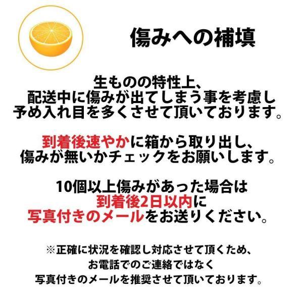 早生みかん訳あり5kg|mikan-hana|09