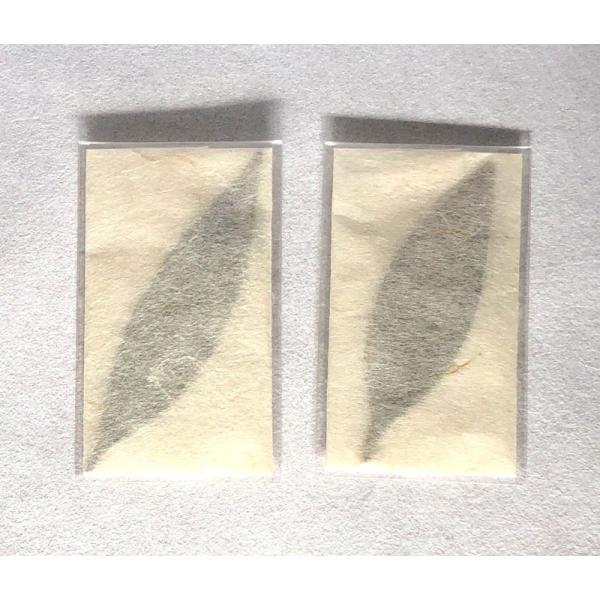 梛(ナギ)の押し葉、熊野紙包み(2枚セット)|mikumanonet|02