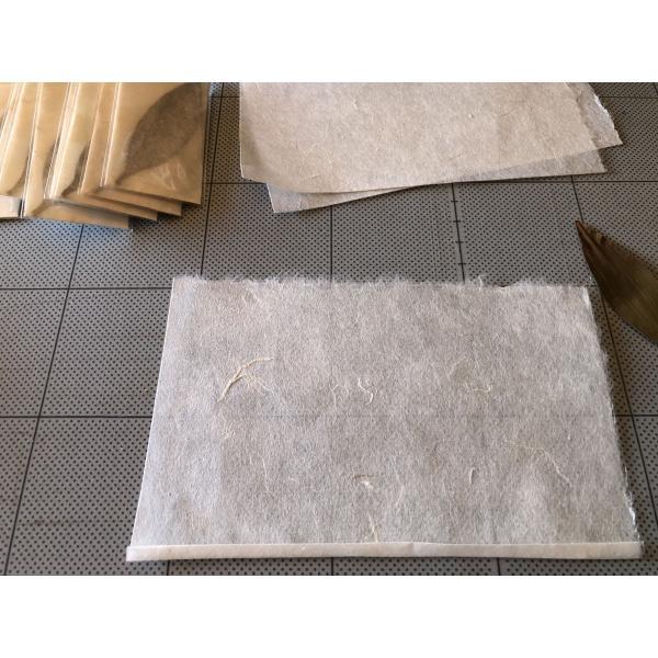 梛(ナギ)の押し葉、熊野紙包み(2枚セット)|mikumanonet|05