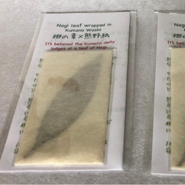 梛(ナギ)の押し葉、熊野紙包み(2枚セット)|mikumanonet|08