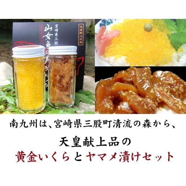 黄金いくらと山女魚の漬けセット mimatan 03