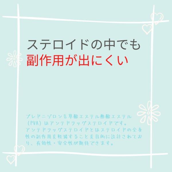 【虫刺され 治療薬】ラシュリアPEクリーム 14g (指定第2類医薬品) 痒み 湿疹 あせも|minacolor|04