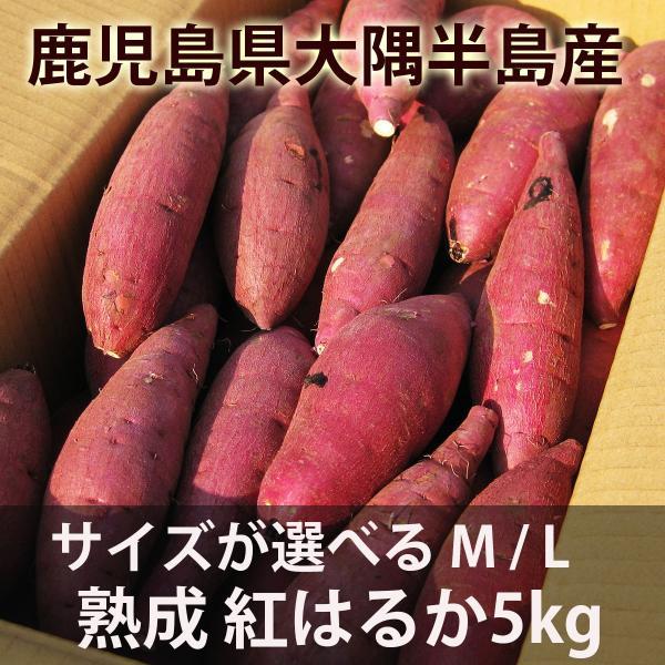 鹿児島のさつまいも「紅はるか」5kg サイズが選べる M・L  熟成 べにはるか