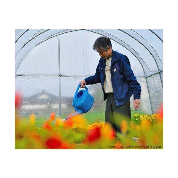 ビニールハウス 菜園ハウス四季 OH-2750 (4.1坪/蝶番式扉) [南栄工業 ナンエイ ビニール温室] minatodenki 04
