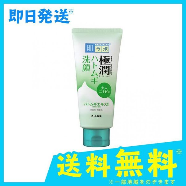 肌ラボ 極潤 ハトムギ洗顔フォーム 100mL|minoku-max