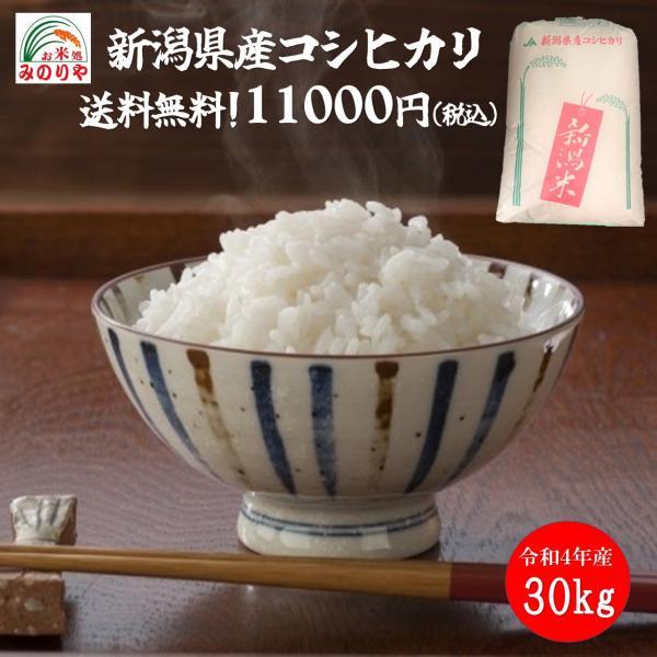 令和2年産 新潟県産 コシヒカリ 玄米30kg うまい米 米専門 みのりや ポイント消化 送料無料