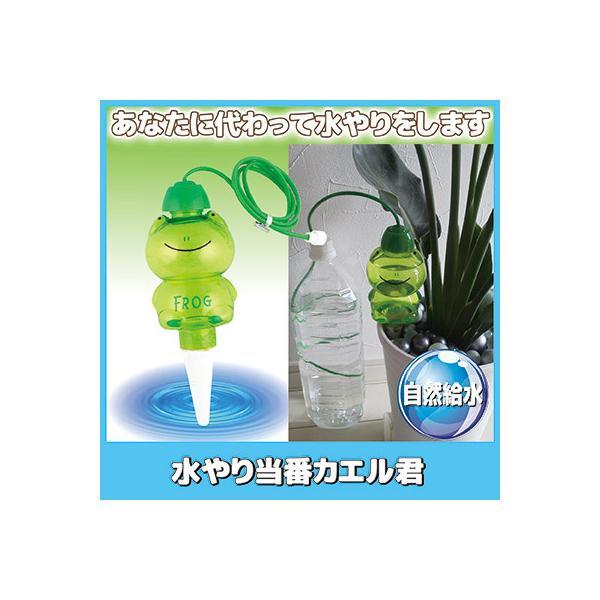 水やり当番カエル君 自動給水 自動水やり 水枯れ防止 観葉植物