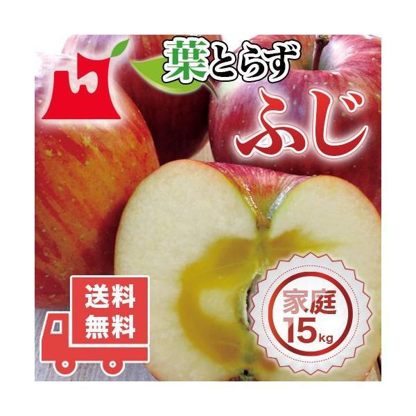 送料無料 青森県産 葉とらず ふじご家庭用15kg (約42〜54個)人気の訳ありリンゴ 青森産 訳あり サンふじ