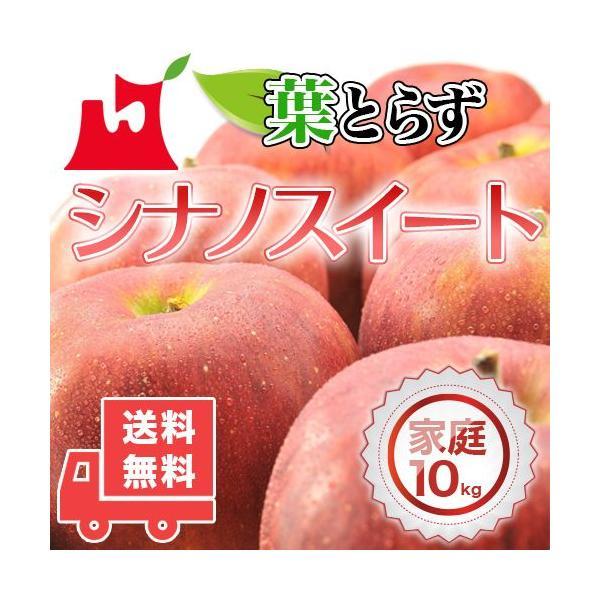送料無料 青森県産 葉とらず シナノスイート ご家庭用10kg (約28〜40個)人気の訳ありリンゴ [※産地直送・同梱不可]