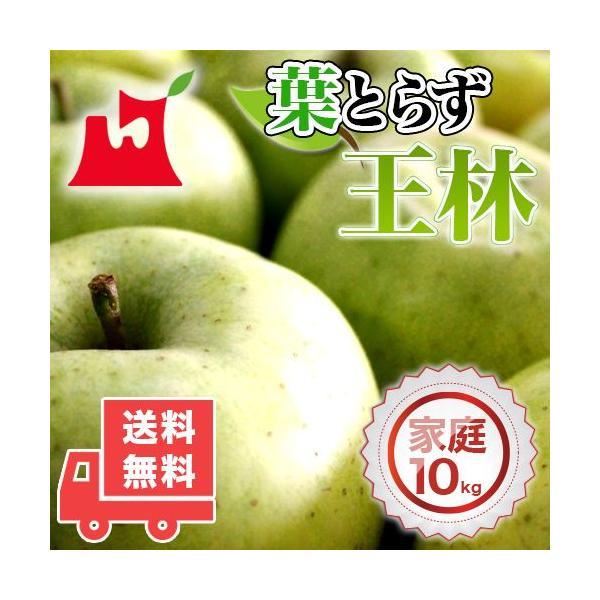送料無料 青森県産 葉とらず 王林 ご家庭用10kg (約28〜40個)人気の訳ありリンゴ [※産地直送・同梱不可]