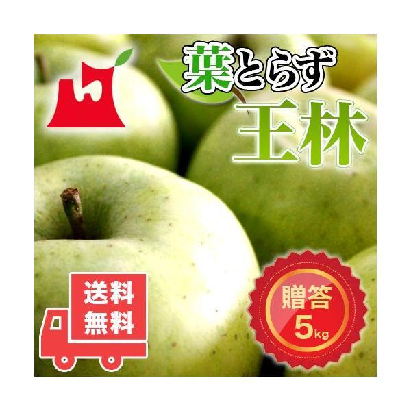 送料無料 青森県産 葉とらず 王林 ご贈答用5kg (約14〜18個)ギフトに最適 [※産地直送・同梱不可]