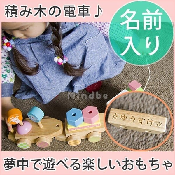 木のおもちゃ 知育  積み木 名入れ 名前入り アニマルプルトイ 積木 セット 男の子 女の子 出産祝い 誕生日プレゼント 1歳 2歳 3歳