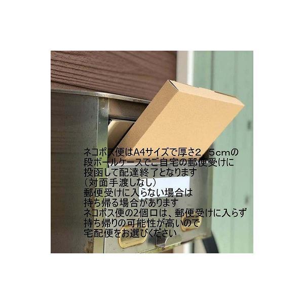 大森さんのブサカワ猫ポーチ(手のひらサイズ)|mishinkoubou|11