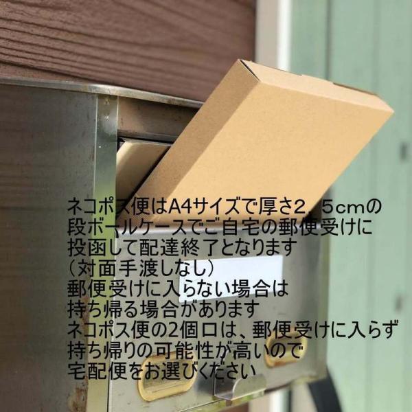 がんばっぺし!! 丸底巾着ポーチ|mishinkoubou|15
