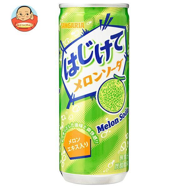 サンガリアサンメロン250g缶×30本入