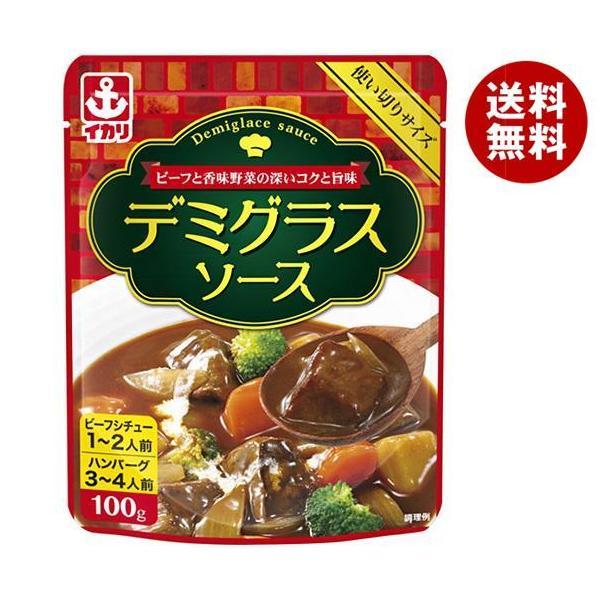 送料無料 【2ケースセット】イカリソース デミグラスソース 100g×10袋入×(2ケース)