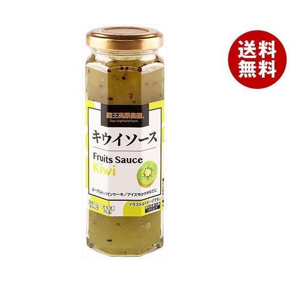 送料無料 【2ケースセット】和歌山産業 フルーツソース キウイ 160g×12本入×(2ケース)