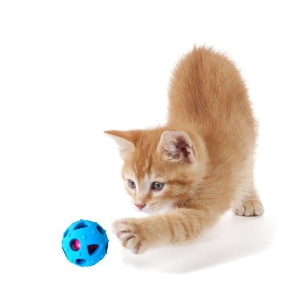 ペット用おやつボール 猫 犬用 噛むおもちゃ 歯磨き用ボール 噛むボール 餌入れおやつボール フード入れ 噛む玩具 知育玩具 わんちゃんのストレス解消 宅配便 missbeki 10